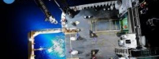 Онлайн-трансляция со дна Марианской впадины